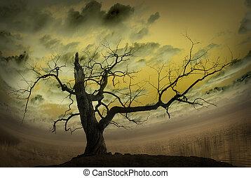 imagen, resumen, árbol desnudo