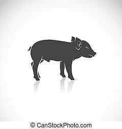 Imagen vector de un cerdito