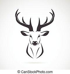 imagen, vector, diseño, fondo blanco, venado, cabeza