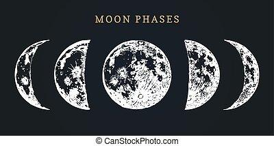 imagen, vector, fondo., nuevo, fases, negro, mano, dibujado, ciclo, luna, lleno, ilustración