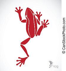imagen, vector, rana