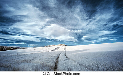 Impresionante color falso surrealista paisaje infrarrojo de verano sobre campos agrícolas