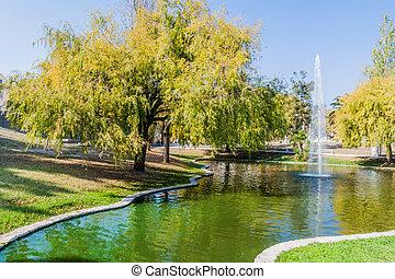 infante, fuente, parque, pedro, aveiro, parque, portug, dom