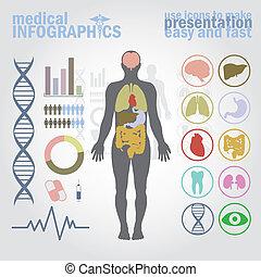 Infografías médicas