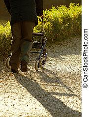 Inhabilitado a ancianos con el médico Walker para caminar