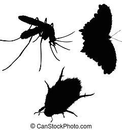 Insecto siluetas de vector