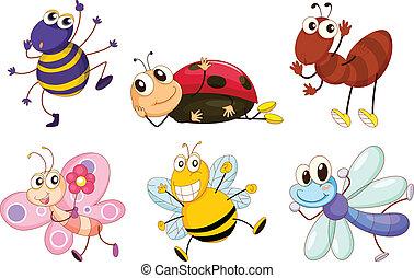 insectos, diferente, bichos
