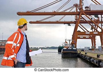 Inspección del puerto