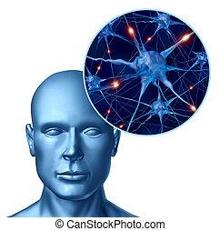 Inteligencia humana con neuronas activas