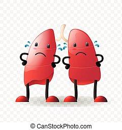 interno, carácter, realista, órgano, lungs., humano