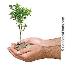 Inversión a la agricultura