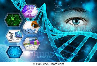 investigación, ciencia médica, científico