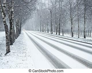 invierno, país, snowfall., camino