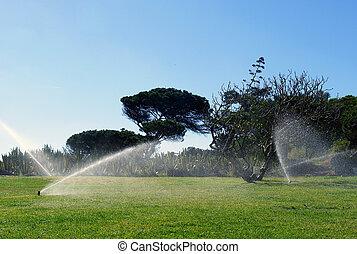 Irrigación automática del jardín