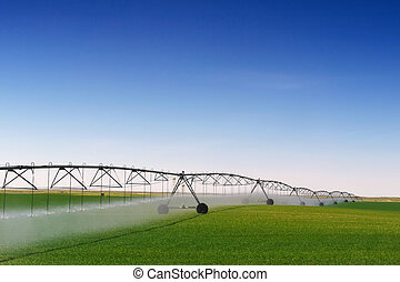 Irrigación de la cosecha