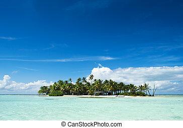 isla, deshabitado, pacífico