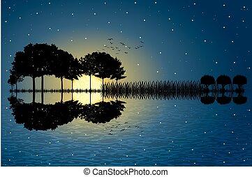Isla Guitar a la luz de la luna