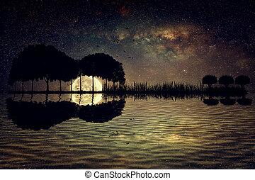 isla, guitarra, luz de la luna