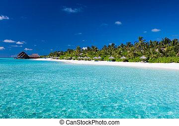 isla tropical, agua, prístino, playa, arenoso