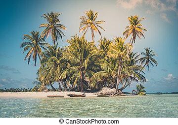 Isla tropical, palmera, playa y océano