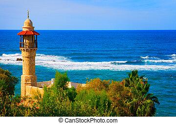 israel, tel aviv, litoral, paisaje, vista