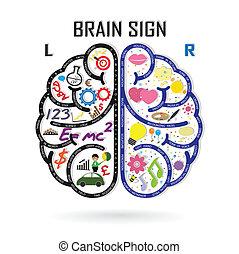 izquierda, creatividad, empresa / negocio, conocimiento, cerebro, icono, derecho, señal, símbolo, educación