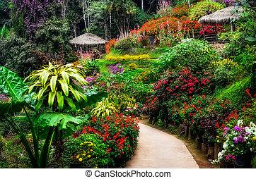 jardín, colorido, flor, ajardinado, pacífico