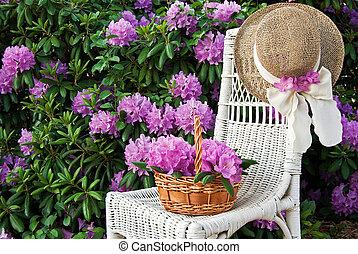 Jardín de Rhododendron