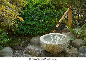 Jardinería de bambú japonés