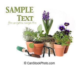 jardinería, tiempo del resorte, plano de fondo, hierba, blanco, feliz
