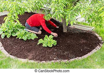 Jardinero trabajando en el jardín haciendo la comida