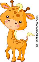 jirafa, diversión, zoo.