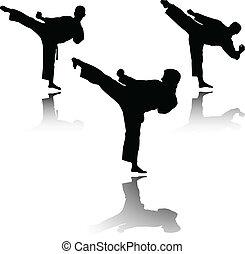 karate, luchador, vector, -
