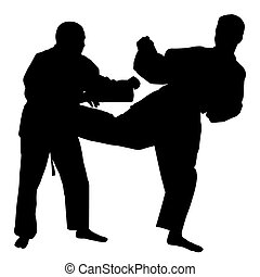 karate, pelea