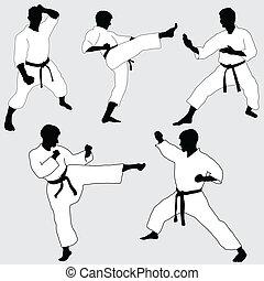 karate, postura