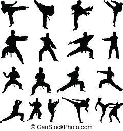 karate, siluetas, posturas, vario