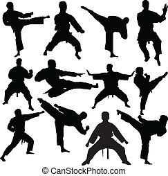 karate, vector, -, colección