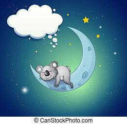 koala, sobre, oso, luna