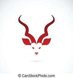 kudu, antílope, vector, imagen, cuernos