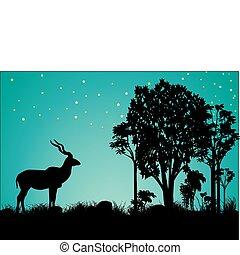 kudu, estrellas, árboles