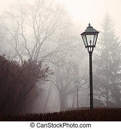 lámpara, niebla, parque, calle, bosque