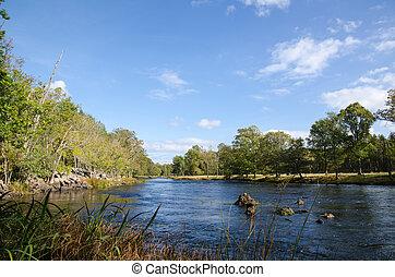 La última vista de verano en un río pequeño