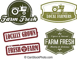 La agricultura y el mercado están frescos
