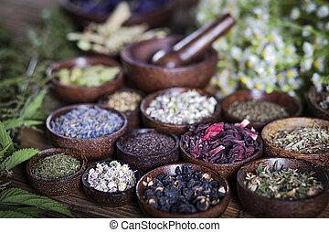 La antigua medicina china