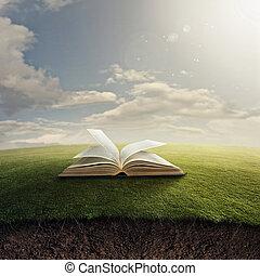 La Biblia sobre la hierba.