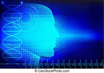 La cabeza humana de fondo médico