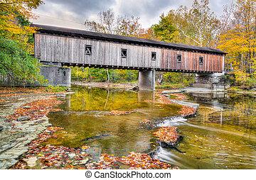 La carretera Olins Dewey cubrió el puente en otoño