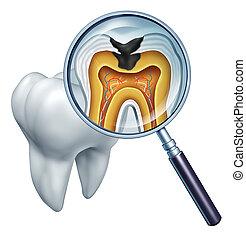 La cavidad de dientes se cierra