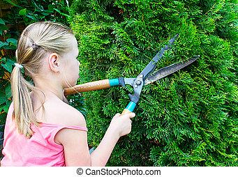 La chica corta arbustos verdes con tijeras