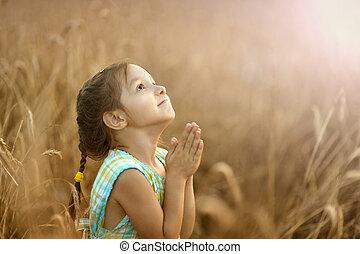 La chica reza en el campo de trigo